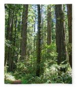 California Redwood Trees Forest Art Prints Fleece Blanket