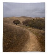 California Winter Fleece Blanket
