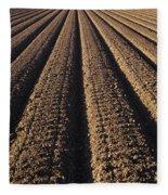 Califronia, View Fleece Blanket