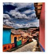 Calle De Colores Fleece Blanket