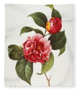 Camellia, 1833 Fleece Blanket