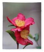 Camellia Sasanqua Yuletide 1 Fleece Blanket