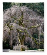 Camperdown Elm Tree Fleece Blanket