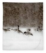 Canada Geese Feeding In Winter Fleece Blanket