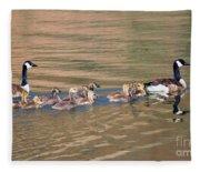 Canada Goose Family Fleece Blanket