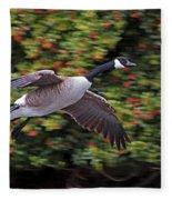 Canada Goose Landing Fleece Blanket