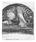 Canada Lynx, 1873 Fleece Blanket