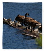 Canada Goose Family Line-up Fleece Blanket