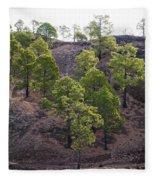 Canary Pines Nr 2 Fleece Blanket