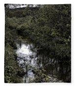 Cannon Beach Creek Fleece Blanket