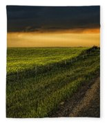Canola And The Road Ahead Fleece Blanket