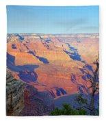 Canyon Grandeur  Fleece Blanket