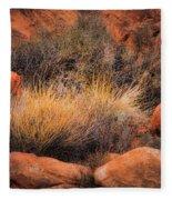 Canyon Grasses Fleece Blanket