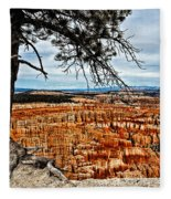 Canyon Overlook Fleece Blanket