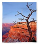 Canyon Tree Fleece Blanket