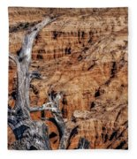 Canyon View Nevada Fleece Blanket