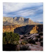 Canyon Walls At Toroweap Fleece Blanket