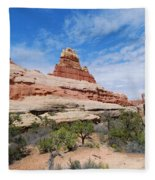 Canyonlands Spring Landscape Fleece Blanket