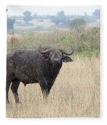 Cape Buffalo Eating Grass In Queen Elizabeth National Park, Ugan Fleece Blanket