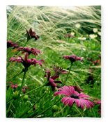 Cape Daisies And Angel Hair Fleece Blanket