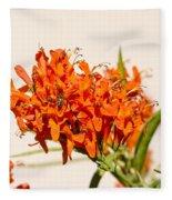 Cape Honeysuckle - The Autumn Bloomer Fleece Blanket