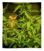 Cape May Warbler Fleece Blanket