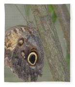 Captivating Photo Of A Brown Morpho Butterfly Fleece Blanket