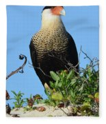 Caracara Portrait Fleece Blanket