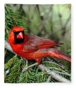 Cardinal Attitude Fleece Blanket