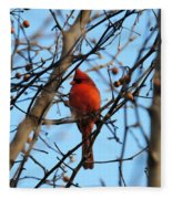 Cardinal II Fleece Blanket