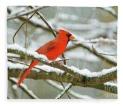 Cardinal In Snow Fleece Blanket
