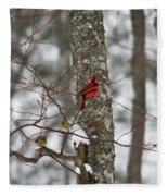Cardinal In Snow Storm Fleece Blanket