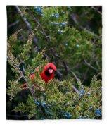 Cardinal Lunch Fleece Blanket