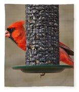 Cardinal On Feeder Fleece Blanket