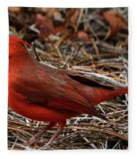 Cardinal On Pine Straw Fleece Blanket