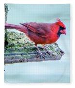 Cardinal Perched Fleece Blanket
