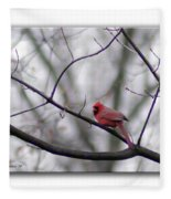 Cardinal Perched On A Branch Fleece Blanket