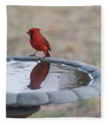 Cardinal Reflection Fleece Blanket