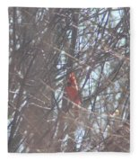 Cardinal Singing  Fleece Blanket