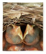 Cardinal Twins - Snugly Sleeping Fleece Blanket