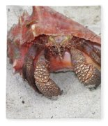 Caribbean Hermit Crab Fleece Blanket
