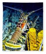Caribbean Reef Lobster Fleece Blanket