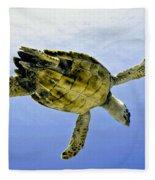 Caribbean Sea Turtle Fleece Blanket