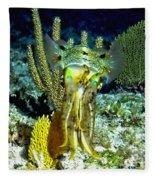 Caribbean Squid At Night - Alien Of The Deep Fleece Blanket