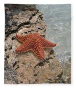 Caribbean Starfish Fleece Blanket