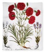 Carnation & Lavender, 1613 Fleece Blanket