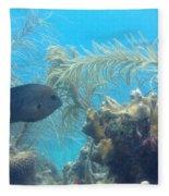 Carribean Sea Life Fleece Blanket
