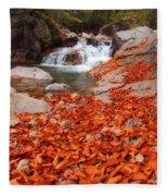 Cascade Brook Fleece Blanket