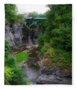 Cascadilla Gorge Cornell University Ithaca New York 02 Fleece Blanket