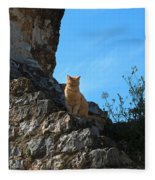 Castle Cat Fleece Blanket